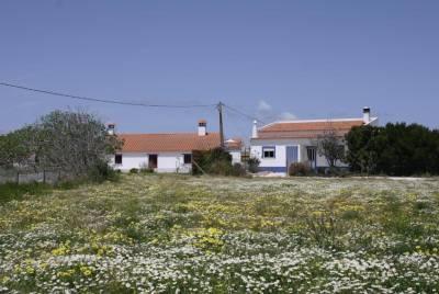 Quinta Samor
