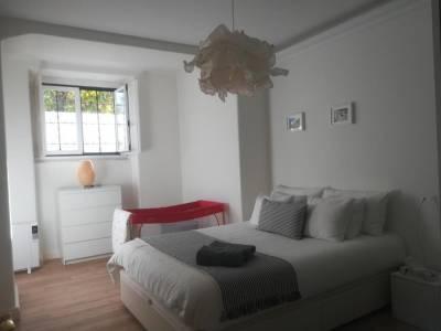 Apartment Carvalho Araujo