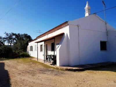 Quinta 203
