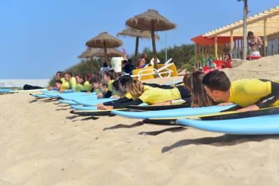 Next Level Surf Camp