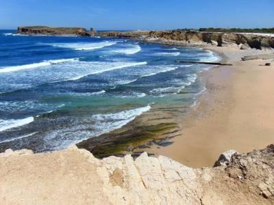 Surf Peniche - Ocean View