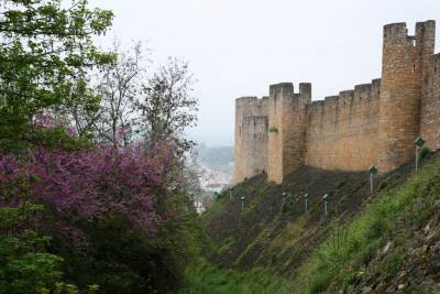 Tomar Castle Walls