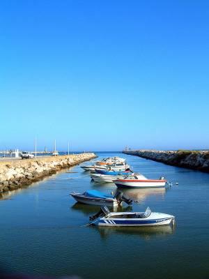 Vilamoura fishing boats