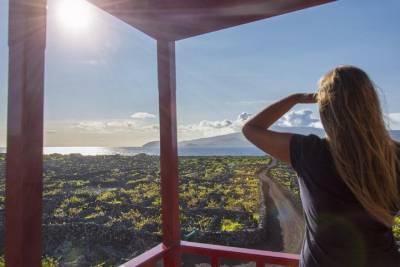 Porto the Invicta Merchant city