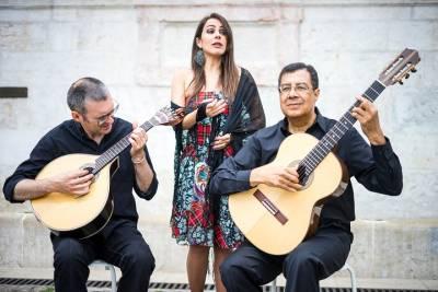 From Porto Aveiro Private Tour with Moliceiro Cruise Half Day