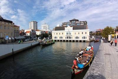 Aveiro Private Tour - Full Day - City of Channels, Salt Pans and Beaches