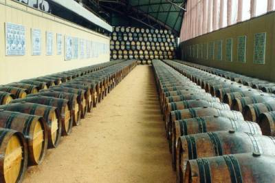 Discover the history and flavors of the best winery's of Lisbon Region