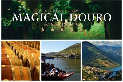 Porto Douro Valley Full-Day Wine Tasting & River Cruise with Lunch