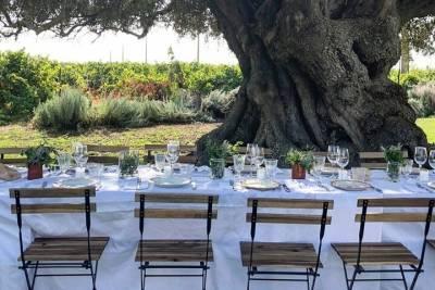 Guimarães and Braga Day Trip from Porto Including Porto Hop-On Hop-Off Bus Tour