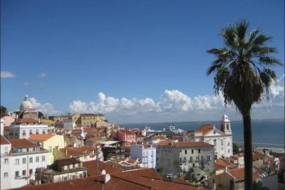 Lisbon walking tailored private tour (half day)