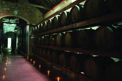 Azeitao: Wine Experience Guided Tour From Lisbon
