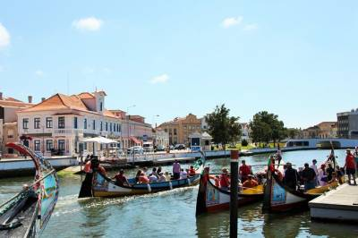 Aveiro full-day private tour from Porto - Vista Alegre Museum,Moliceiro and more