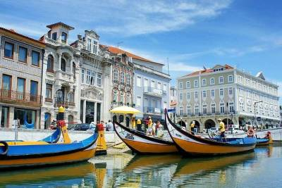 Private Tour: Coimbra (World Heritage) & Aveiro (Little Venice) tour day trip from Lisbon with lunch