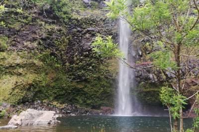 Private Óbidos, Nazaré, and Alcobaça from Lisbon