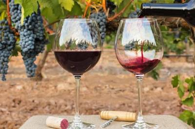 Private Full Day Tour to Flavors of the Alentejo Land, from Lisbon