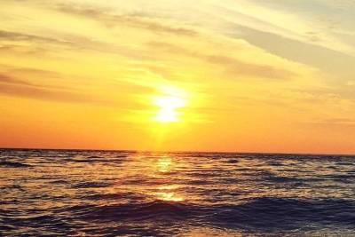 Lisbon Shore Escursion : Portuguese Market & Cooking Experience
