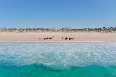 Sitgo Riverside Tour (Parque das Nações - Belém) - Sitway in Lisbon Tour