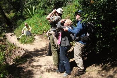 Lisbon Shore Excursion: Private Day Trip to Sintra, Cascais and Estoril