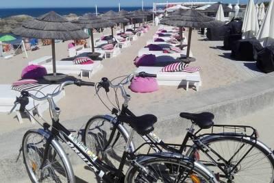 Lisbon: explore Belem and Cascais with a local host