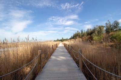 Sintra & Cascais - Charming western coast & Lisbon wines