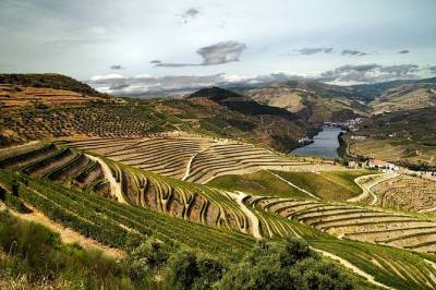 Douro Vinhateiro private tour from Porto