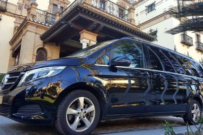 Transfer to Madrid from Lisbon with stop in Évora (1hour)