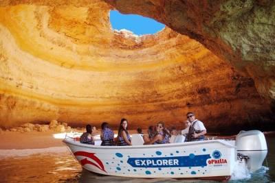 Private Porto city Tour full day (Pick-up and Drop-off in Porto)