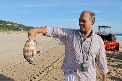 Arrabida Private Tour from Lisbon with Traditional Fisherman's Lunch in Setúbal