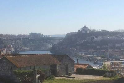 Welcome to Porto - meet the Undefeated City