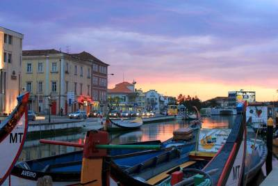Aveiro and Coimbra full day private tour from Porto