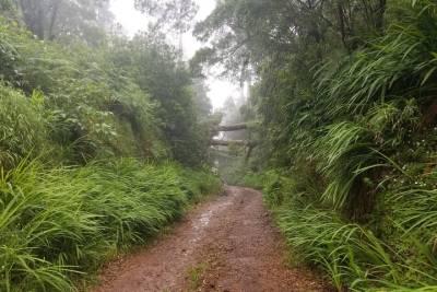 Marinho da Coroa Alta Park Nautical Tour from Porto Seguro