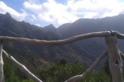 Porto Half-Day Tuk Tuk Private Tour with Lunch