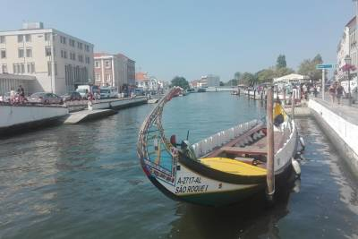 Half Day Tour from Coimbra to Aveiro with Moliceiro Boat