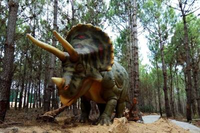 Family Day Trip to Dinosaurs Park & Óbidos - Private Tour from Lisbon