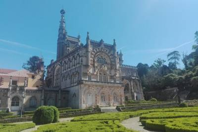 Half Day Tour from Coimbra to Bairrada Cellar and Bussaco Forest