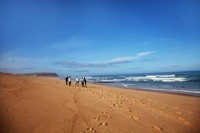 Sintra Full-Day Trip - A Journey through Wonderland