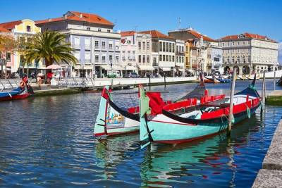 Aveiro and Costa Nova: Private Tour with Moliceiro Cruise Half Day