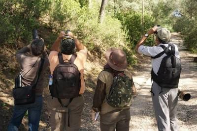 Scuba Diving in Porto Seguro