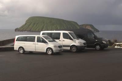 Wine Tour and Regional Picnic in a Vinho Verde Estate from Porto