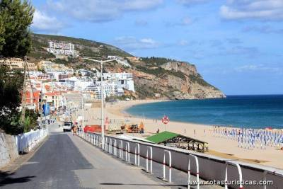Private Tour: Half-Day Visiting the Best Setúbal Winery and Lunch Grill Fish at Sesimbra Beach
