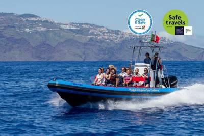 Visit Arraial and Pitinga Beach from Porto Seguro