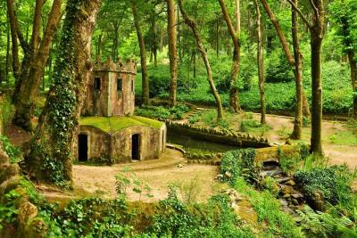 Full-Day Private Tour: Sintra's World Heritage Sites and Cascais