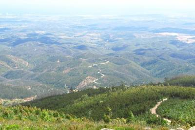 Algarve wine tour and mountain discovery with lunch at mountain top