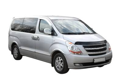 Transfer in Private Minivan from Lisbon Portela Airport to Lisbon City