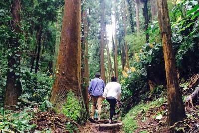 Private 6 hour tour of Fatima from Porto
