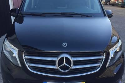 Full-Day Reef Fishing from Vilamoura