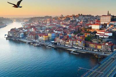 Full Day Guided Tour to Porto from Lisbon