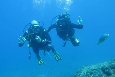 Lisbon Full Day Street Art Tour