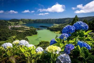 Half Day - Private Tour Sintra