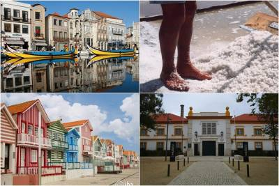 Aveiro Tour Small group, Moliceiro Cruise, Costa Nova, Vista Alegre & Lunch